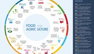 Trump rallenterà gli obiettivi contro la fame nel mondo?