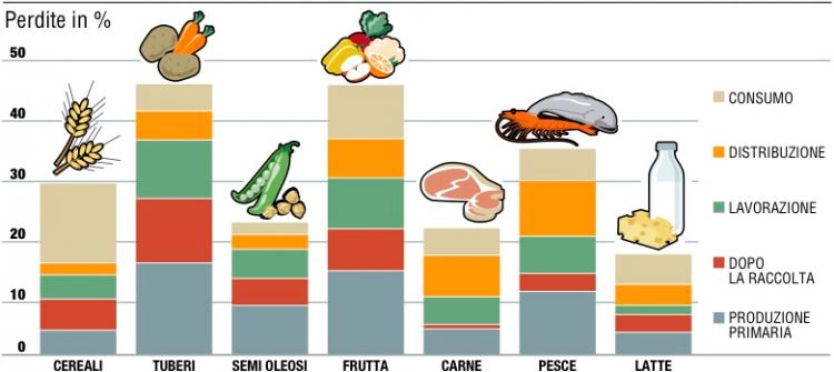I numeri della fame nel mondo